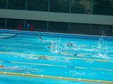 水泳部の活動